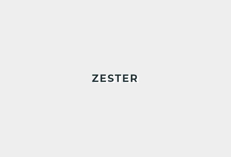 ZESTERロゴ